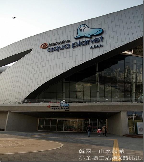 韓國。親子旅遊|充滿歡樂與驚喜,多種願望一次滿足的,首爾最大AQUA PLANET一山海之星水族館